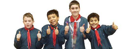 Scouts-1a